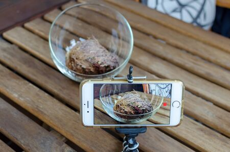 View of phone shooting footage of opening Rose of Jericho (Anastatica hierochuntica) plant in glass bowl. Shooting timelapse on the balcony.