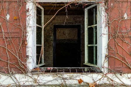 Outside View of old wooden window open and brick wall of ruined house with dark doorway. .bare branches of grapes curl on red wooden window shutters.