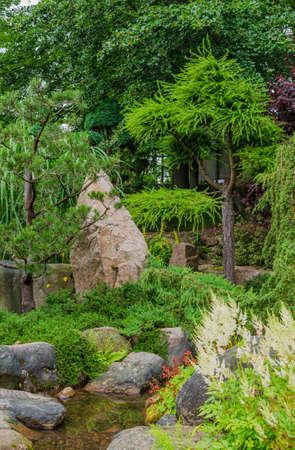 Japanese garden view with shaped conifer trees, stones and pond in summer. Poland, Shklarska poreba.  Selective focus. 版權商用圖片