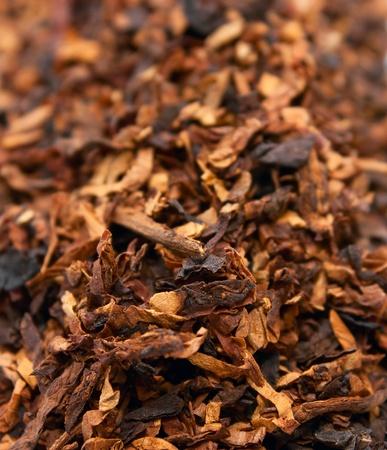 hojas secas: Las hojas secas de tabaco de cerca