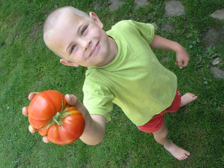 Boy and tomato photo