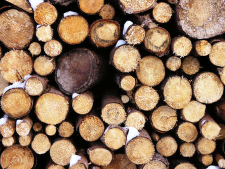 circumference: logs in winter Stock Photo