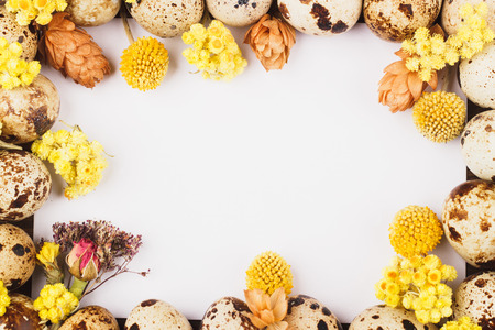 flores secas: Easter frame from quail eggs and dried flowers, wooden background Foto de archivo