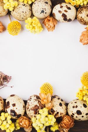 huevos codorniz: Capítulo de los huevos de codorniz y decoraciones de flores secas, la luz de fondo Foto de archivo