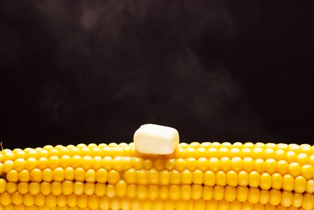 The cob of yellow boiled corn on the black background