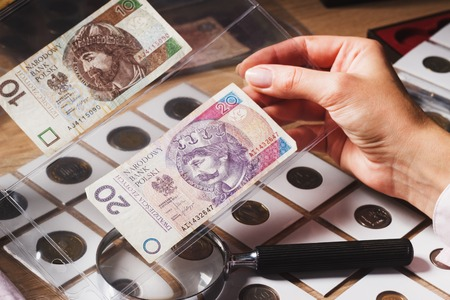 numismatist: Woman looking at the page with Zloty in the pockets, soft focus background