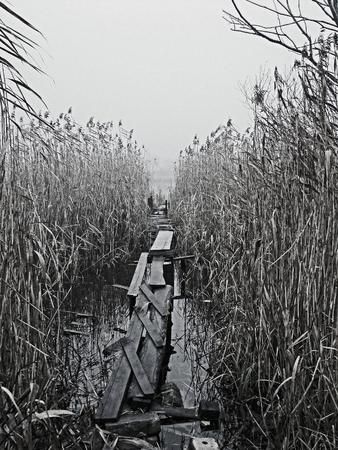 stillness: Wooden bridge on a cloudy day