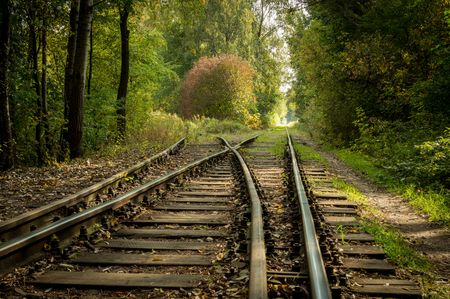 endless: Endless railway in the forest