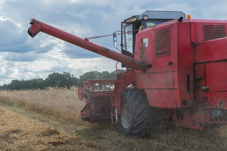 Grain is harvester during harvest in summer in Poland title = Grain is harvester during harvest in summer in Poland