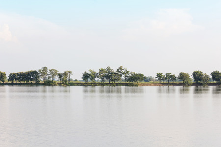 big scenery: Park landscape beautiful scenery of big open pond and tree range with background mountain behind under clear blue sky  in summer feeling
