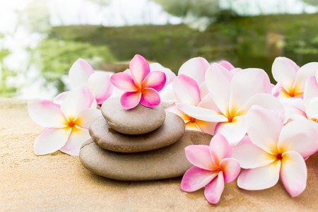 florae: Flower plumeria or frangipani sweet decorated on  pebble rock in style of spa meditation and romantic feeling with water background Stock Photo