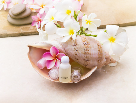 shower stall: Mini set of bubble bath and shower gel in sea conch shell  decorated with beautiful flower plumeria