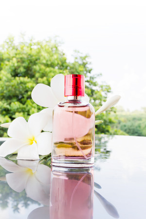 eau de perfume: Single bottle of sweet pink fragrant perfume decorated with white flower and nature background