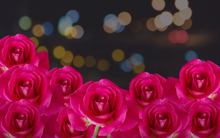 red rose bokeh: Red rose flower bunch on night background with bokeh light Stock Photo