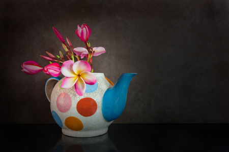 florae: Beautiful flower plumeria or frangipani in fancy baked clay teapot on still life dark background