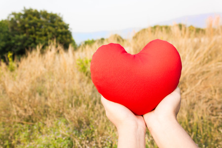 gently: Women hand gently hold red heart with love, careness and restpect on wild grass flower field background