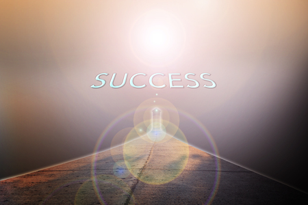 fulfil: Business concept road to success with text in sunlight background and copy space
