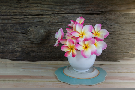 florae: Pink flower frangipani in white cup with wood background and copy space Stock Photo