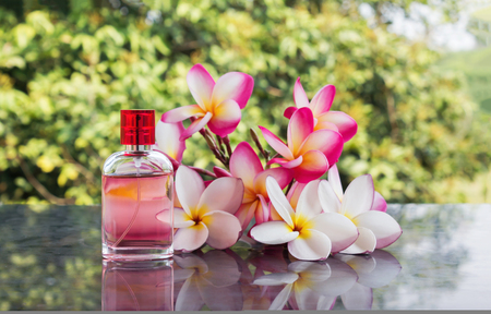 eau de perfume: Single bottle of sweet pink fragrant perfume decorated with pink and white flower frangipani or plumeria and tree background