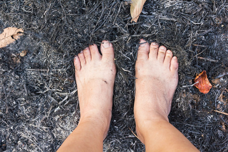 cinders: Top view barefoot on forest burnt cinders ground, concept world forest protect