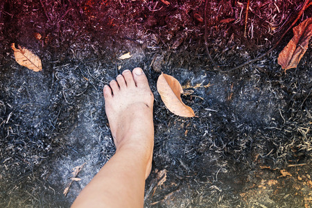 cinders: Barefoot walk on forest burnt cinders ground, concept of dangerous burnt