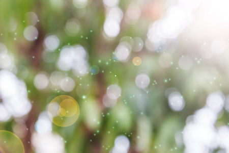 disseminate: Fresh summer colour orange pink and green tone  bokeh and sunlight with lens flare abstract dreamy background