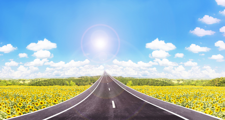 puffy: Long road  to high puffy cloud cheerful sunny blue sky with sunflowers field background