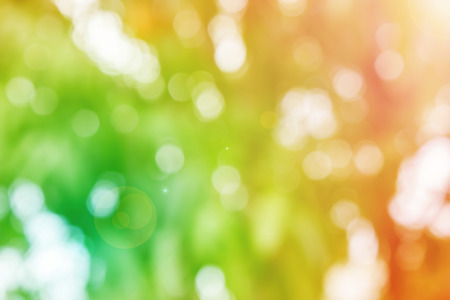 disseminate: Fresh summer colour orange and green tone  bokeh and sunlight with lens flare abstract background