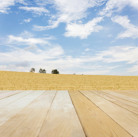 jointed: Blank area or space table top on wide grass field at hill with puffy clouds blue sky in spring or summer mood nature background, jointed wood table top for putting background