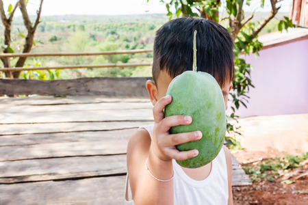 super fruit: Asian boy present or show how super organic big fresh green mango fruit in background of highland garden view, funny and cute