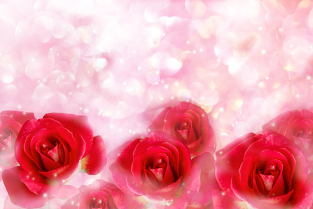 pink pearl: Red roses in wonderful romantic soft pastel pink pearl with bokeh for valentine background