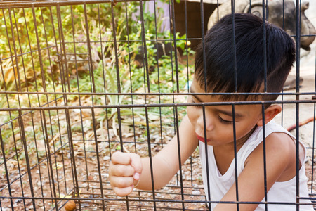 Little Asian boy in the cage, kidnap or imprison concept Stock Photo