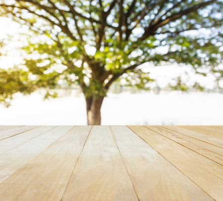 jointed: Jointed wood table top for putting products on lake and tree background