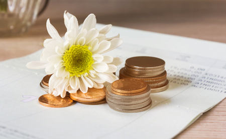 Coins and flower on book bank account for money saving concept Stock Photo