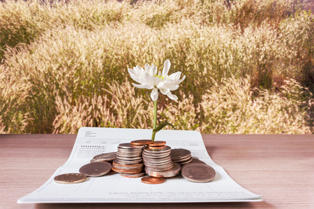 Coins and flower on book bank account and grass field background