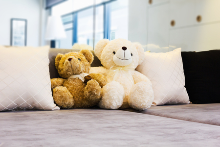Couple cute bear dolls sit on sofa in house with copy space