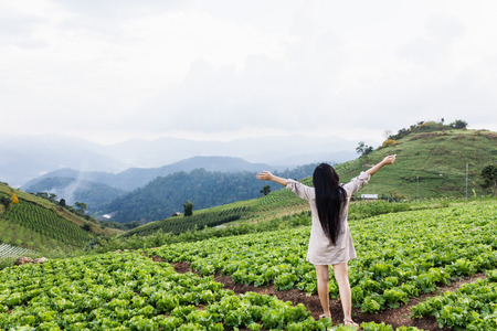 Back or rare view long black hair women or girl standing in vegetable field and mountain nature fresh view, organic farm on the hill  Standard-Bild