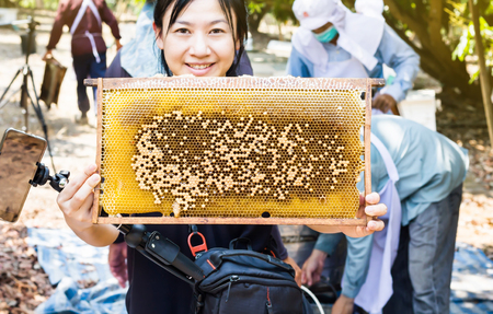 Big bee hive presented by smiling Asian women with farmers working in the farm garden Standard-Bild