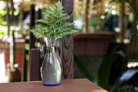 Fresh green fern plant in translucent vase on table, easy home decoration