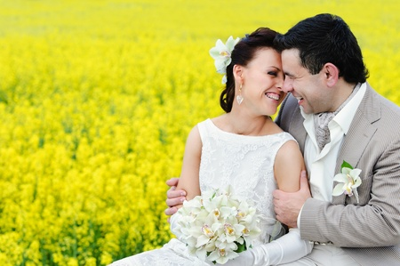 Newly-married couple kissing on the background of rape field photo