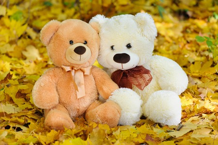 Two Teddy bears sitting in the autumn leaves