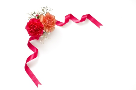 carnations: ribbon,