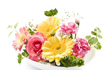 colorfulness: flower