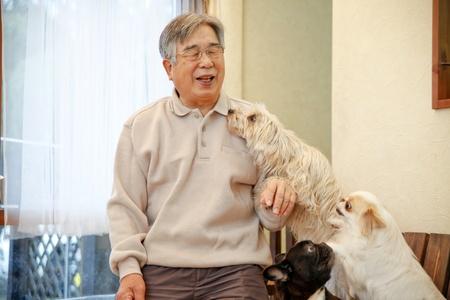 pet therapy: animal therapy