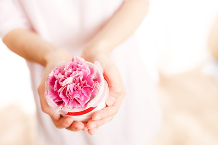mother s day: Carnation