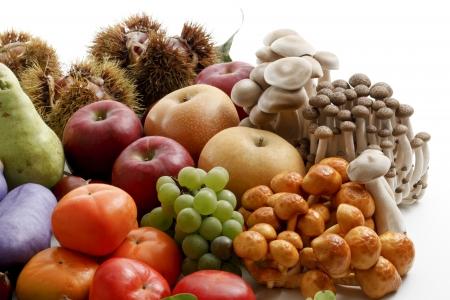 가을의 식품