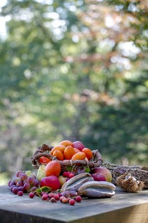 autumn, taste photo
