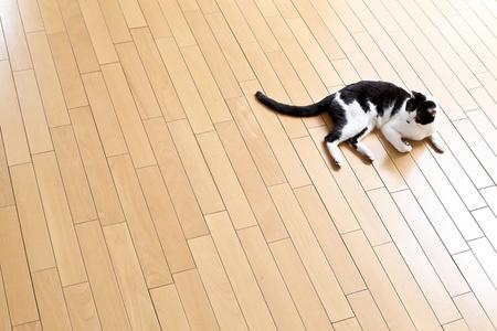 floor heating photo