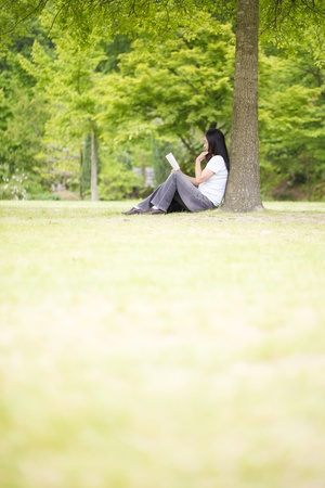 Reading, Stock Photo - 12521519