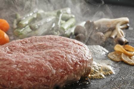 hamburger steak, photo
